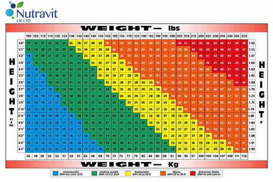 Vitatec Nutrition Bmi